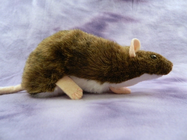 Agouti Brown Berkshire Rat Plushie