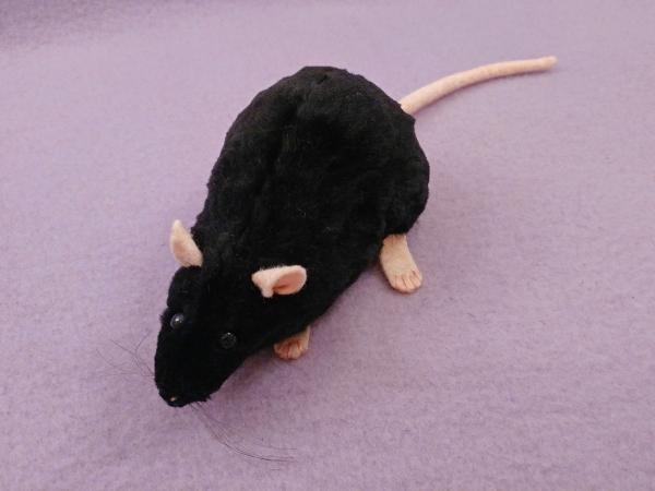 Black Rat Plushie