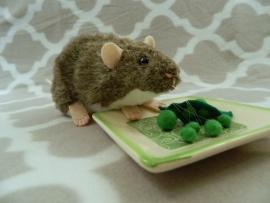 Agouti Grey Berkshire Rat Plushie