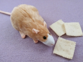 Beige Blazed Rat Plushie