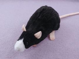 Black Blazed Rat Plushie