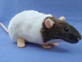 Dark Grey Capped Rat Plushie