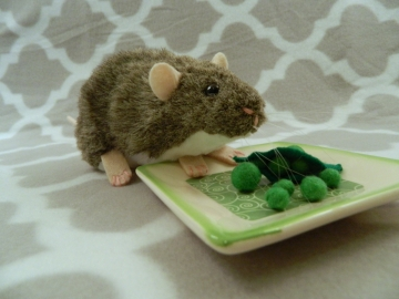 Agouti Grey Berkshire Rat Plushie