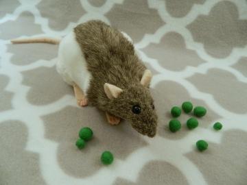 Agouti Grey Hooded Rat Plushie