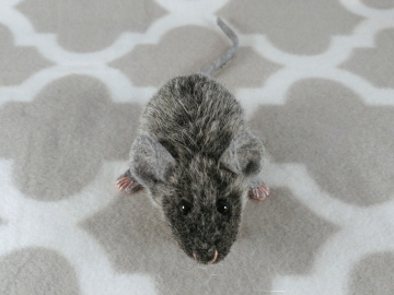 Agouti Grey Mouse Plushie