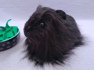 Big Black Longhaired Guinea Pig Plushie