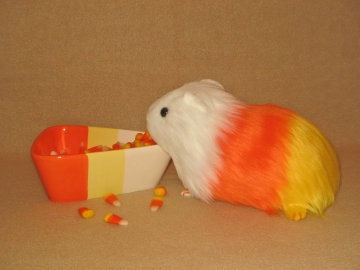 Big Candy Corn Guinea Pig Plushie