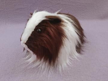 Big Dark Brown Dutch Longhaired Guinea Pig Plushie