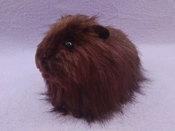 Big Dark Brown Longhaired Guinea Pig Plushie