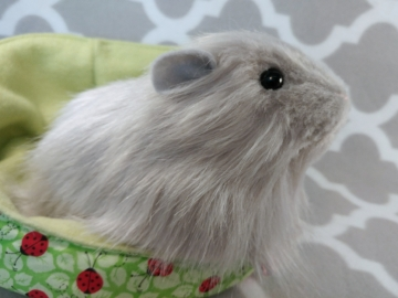 Big Grey Longhaired Guinea Pig Plushie