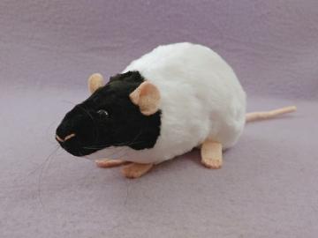 Black Capped Rat Plushie