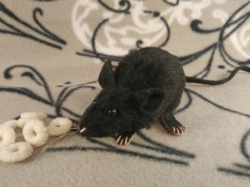 Black Mouse Plushie