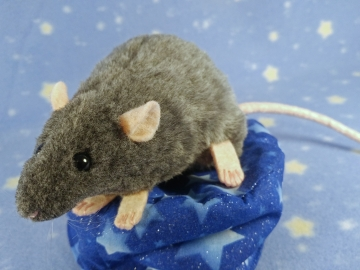Blue Grey Berkshire Rat Plushie