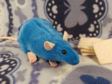 Blue Rat Plushie