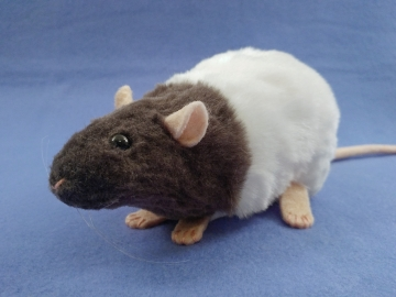 Dark Grey Bareback Rat Plushie