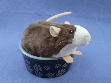 Dark Grey Blazed Rat Plushie
