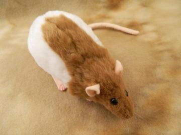 Fawn Half-Hooded Rat Plushie