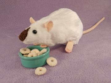 Himalayan Rat Plushie