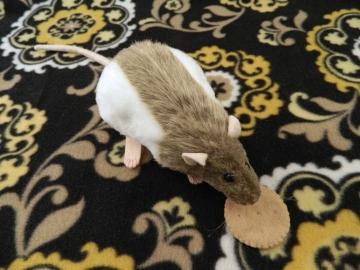 Light Brown Hooded Rat Plushie
