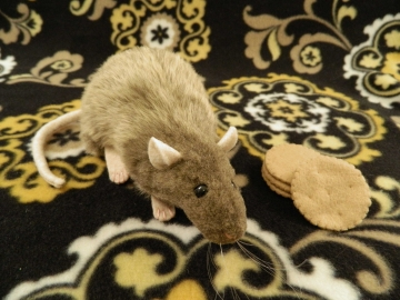 Light Brown Rat Plushie