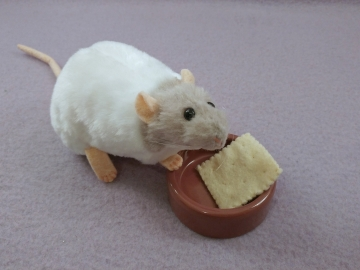 Light Grey Capped Rat Plushie