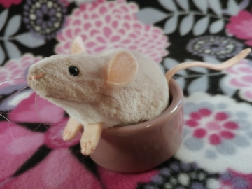 Light Pink Mouse Plushie with White Belly