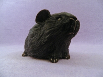 Little Black Guinea Pig Plushie