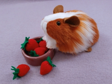 Little Ginger Dutch Guinea Pig Plushie