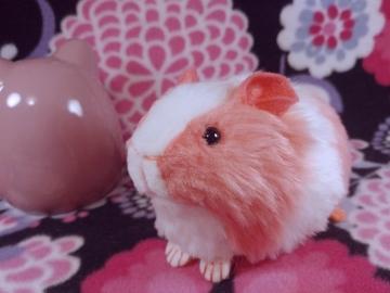 Little Hot Pink Dutch Guinea Pig Plushie
