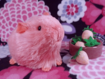 Little Hot Pink Guinea Pig Plushie