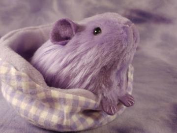 Little Lavender Guinea Pig Plushie