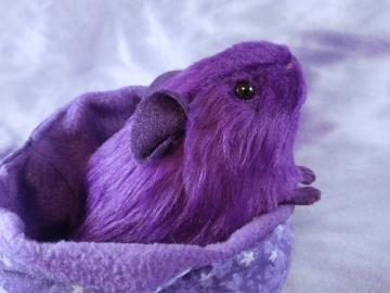 Little Violet Guinea Pig Plushie
