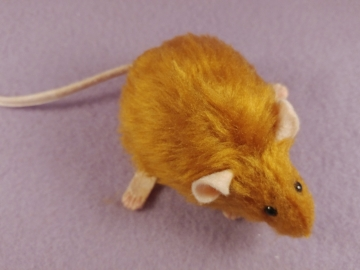 Chubby Ginger Mouse Plushie
