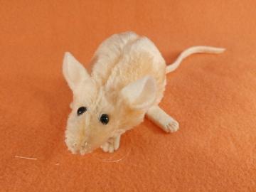Peach Mouse Plushie