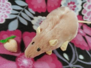 Pink Rat Plushie