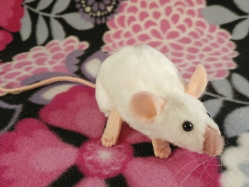 Pink Siamese Mouse Plushie