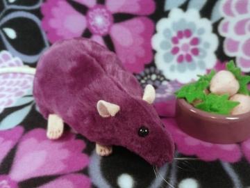 Plum Rat Plushie
